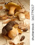mushroom boletus over wooden...   Shutterstock . vector #161779217