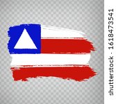 flag of bahia from brush...