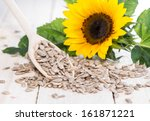 Fresh Sunflower Seeds  Macro...