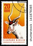 Small photo of GDR - CIRCA 1970: a stamp printed in GDR shows White Antelope, Addax, Addax Nasomaculatus, Animal, circa 1970