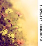 beautiful defocus blur retro... | Shutterstock . vector #161902841