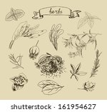 vector illustration with hand... | Shutterstock .eps vector #161954627