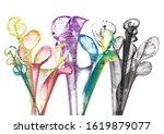 art abstract flowers .hand...   Shutterstock . vector #1619879077