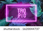 vector banner with color... | Shutterstock .eps vector #1620044737