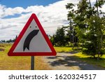 A right curve warning road sign ...