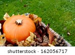 Closeup Of Ripe Pumpkin With...