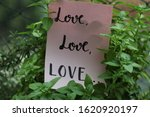 """Small photo of """"Love love love"""" handwritten on pink paper between plant leaves"""