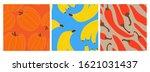 set healthy vegetable pumpkin ... | Shutterstock .eps vector #1621031437
