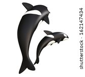 Orca Whale.