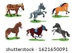 Different Horse Breeds Standin...