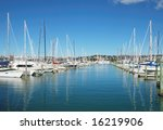 city of sails  auckland  new... | Shutterstock . vector #16219906