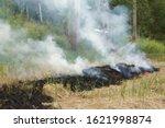 Burning Dry Grass In Field...