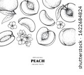 vector frame with peach. hand... | Shutterstock .eps vector #1622684824