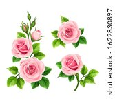 vector set of pink roses... | Shutterstock .eps vector #1622830897