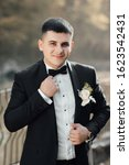 groom in a suit with a bow tie... | Shutterstock . vector #1623542431