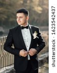 groom in a suit with a bow tie... | Shutterstock . vector #1623542437