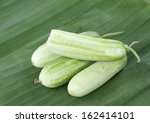 fresh green cucumber collection outdoor  - stock photo