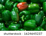 Pile Of Green Capsicum With One ...