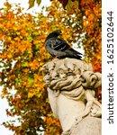 Paris  France   November 5 201...