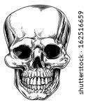 a vintage human skull or grim... | Shutterstock .eps vector #162516659