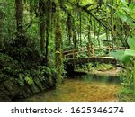 Small Walkway Above A Stream In ...
