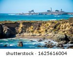 View On Elephant Seals And...