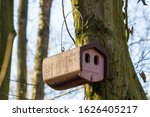 A Modern Birdhouse Hanging On ...