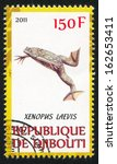 Small photo of DJIBOUTI - CIRCA 2011: stamp printed by Djibouti, shows African clawed frog, circa 2011