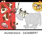 cartoon illustration of... | Shutterstock . vector #162688097