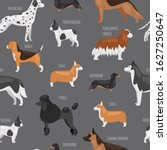 dog breeds vector seamless...   Shutterstock .eps vector #1627250647
