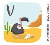 Cartoon Vulture Vector...