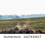 steaming heaps of cow dung in... | Shutterstock . vector #1627610617
