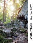 Cunningham Falls Trail, Catoctin Mountain Ridge