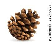 pine cone vector illustration | Shutterstock .eps vector #162777884