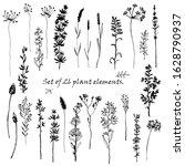 set of 26 plant elements. black ... | Shutterstock .eps vector #1628790937