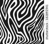 zebra texture black and white | Shutterstock . vector #162892541