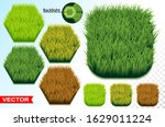Green And Savanna Grass Hexago...