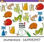 cartoon illustration of finding ... | Shutterstock .eps vector #1629052957
