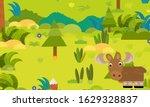 cartoon forest scene with wild... | Shutterstock . vector #1629328837