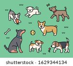Different Breeds Of Dogs Are...