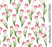 seamless pattern with pink... | Shutterstock . vector #1629375061