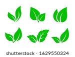 set of green leaves iconsset of ... | Shutterstock .eps vector #1629550324