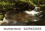 water falls and fauna down... | Shutterstock . vector #1629622654