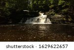 water falls and fauna down... | Shutterstock . vector #1629622657