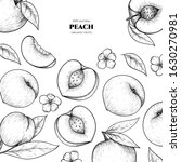 vector frame with peach. hand... | Shutterstock .eps vector #1630270981