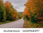 Vibrant Autumn Colors In New...
