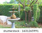 Fountain In The Park Garden....