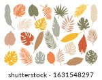 big set of different tropical... | Shutterstock .eps vector #1631548297