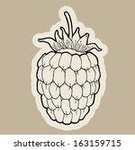 raspberry cartoon vector. | Shutterstock .eps vector #163159715