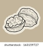 walnut cartoon vector. | Shutterstock .eps vector #163159727
